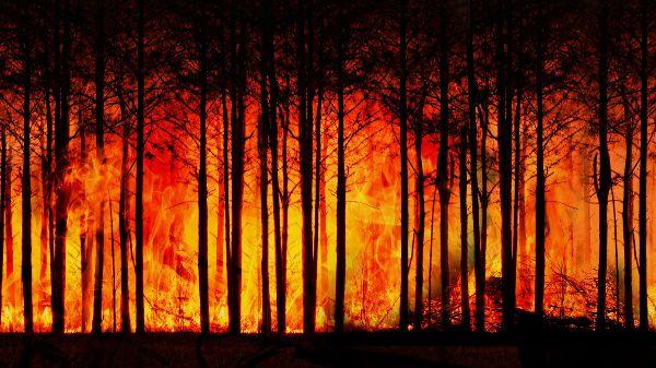 İHA ile yangın müdahalesi